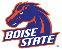 College Tire Cover, Boise State, Large, White