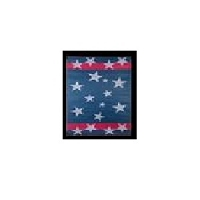 Faulkner 9 Feet Width x 12 Feet Length With Stars And Stripes Camping Mat