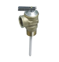 T & P  Connector Valve With Probe