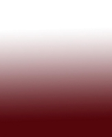 Replacement Awning Fabric for Weatherpro 20' in Maroon